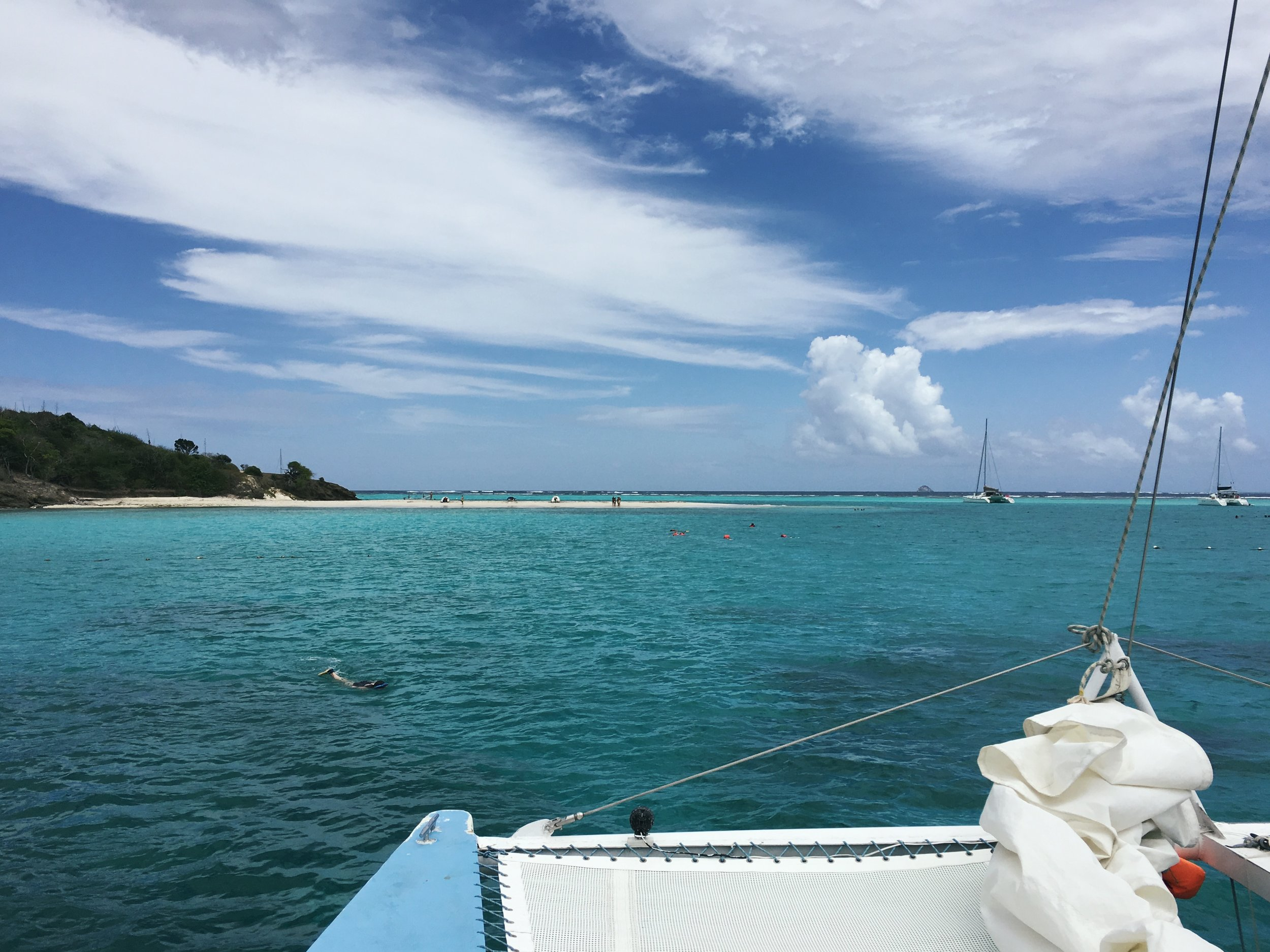 vacation sailing adventure, swim with sea turtles