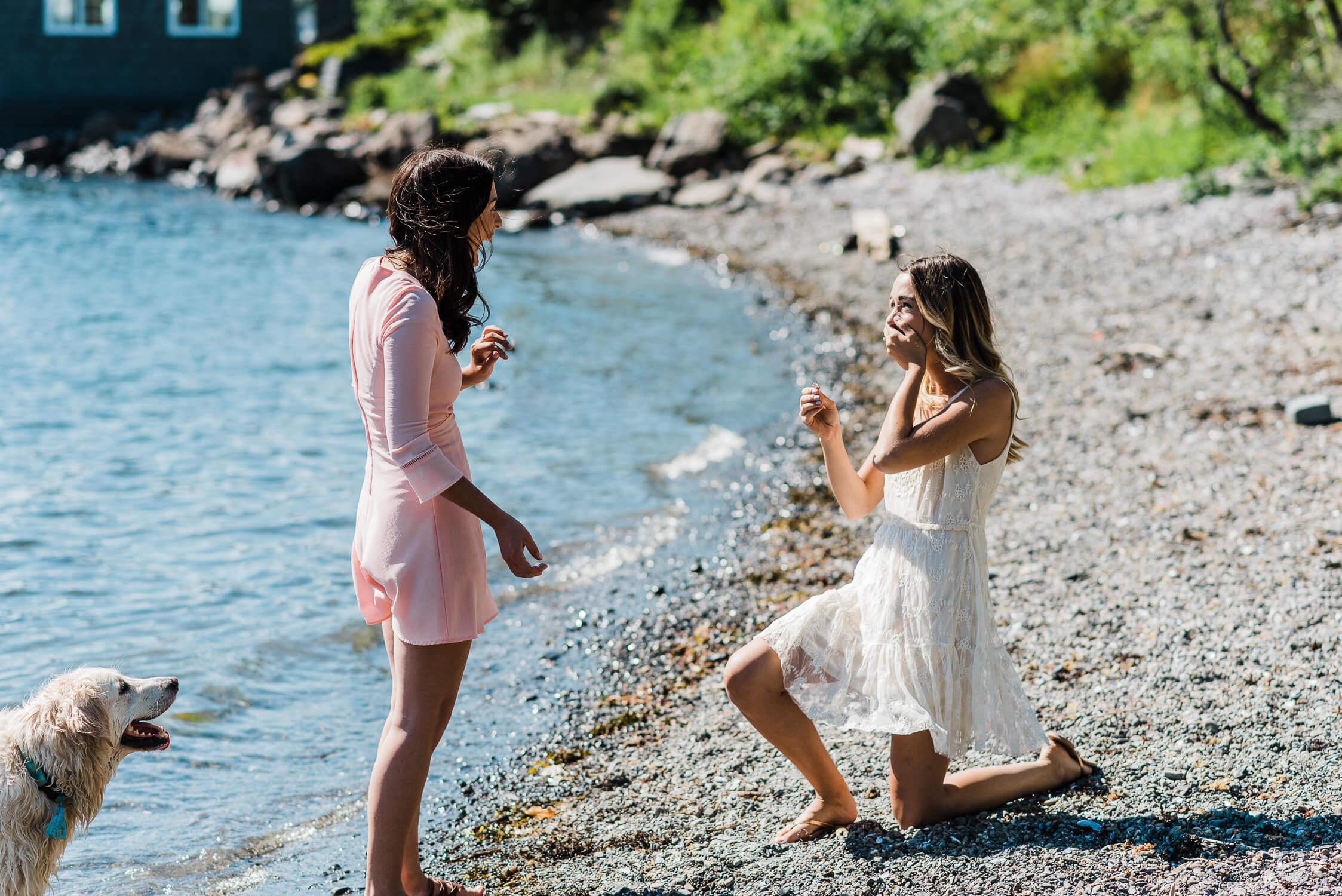 Woman proposes to her girlfriend at the park beach